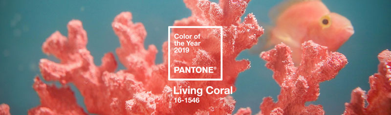 Pantone 2019 Color Year Living Coral